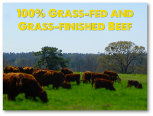 100% Grass-fed beef raised with no hormones or chemical wormers