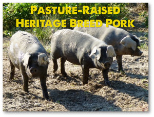 Old-Fashioned Pasture-Raised Pork with no MSG, no soy, no hormones, and no confinement.