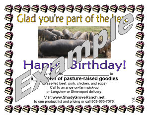 Birthday gift certificate example