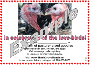 Love-bird theme gift certificate example