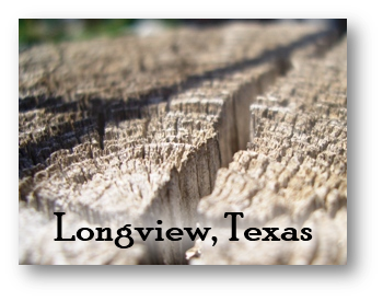 Longview Texas Purchasing Information