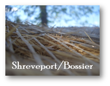 Shreveport Bossier Purchasing Information